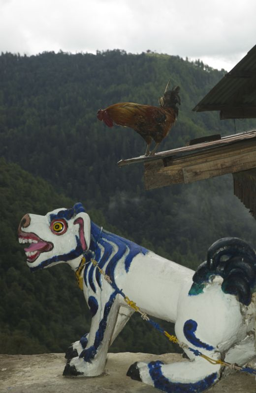 Snow Lion with Rooster